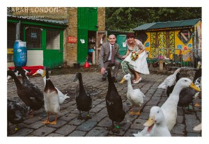 Bride and groom portrait with ducks at Hackney City Farm.