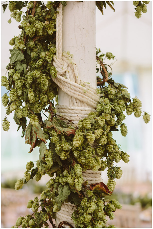 hops wrapped around a marquee pole